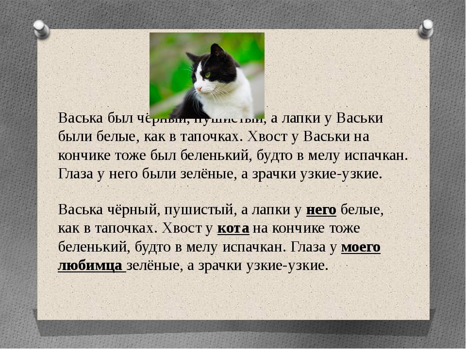 Васька чёрный, пушистый, а лапки у него белые, как в тапочках. Хвост у кота н...