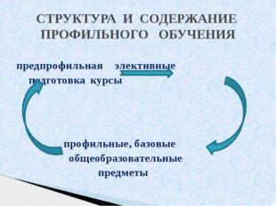предпрофильнаяэлективные подготовкакурсы профильные, базовые общеобр