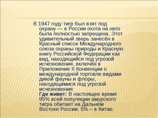 В 1947 году тигр был взят под охрану — в России охота на него была полностью