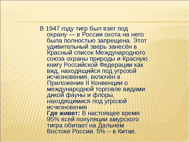 В 1947 году тигр был взят под охрану — в России охота на него была полностью...