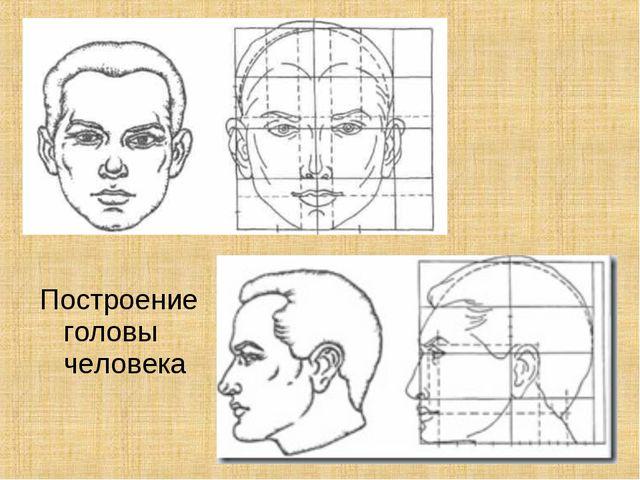 Построение головы человека