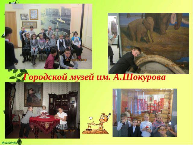 Городской музей им. А.Шокурова
