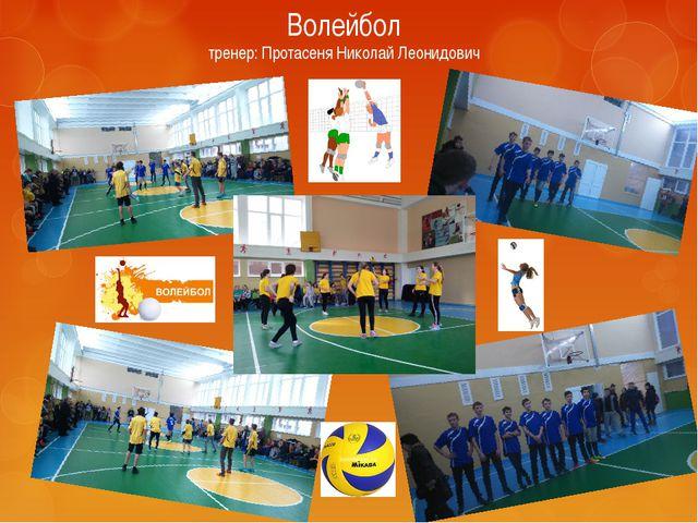 Волейбол тренер: Протасеня Николай Леонидович