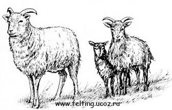 http://felting.ucoz.ru/_si/0/42096004.jpg