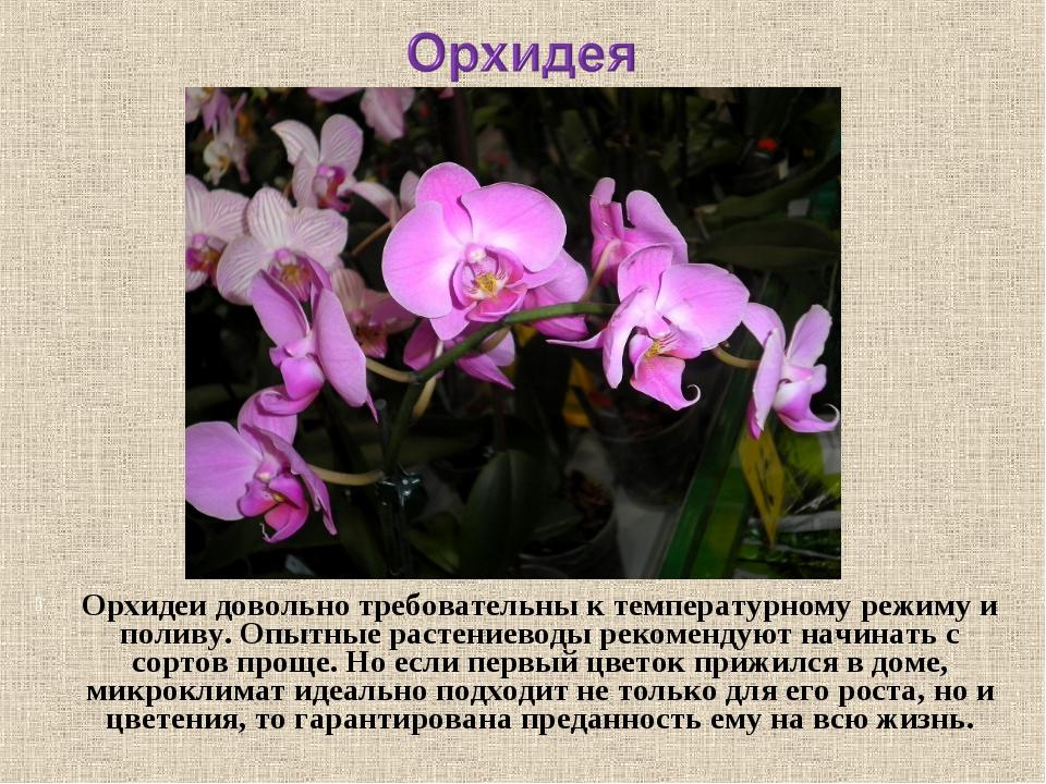 Орхидеидовольно требовательны к температурному режиму и поливу. Опытные раст...
