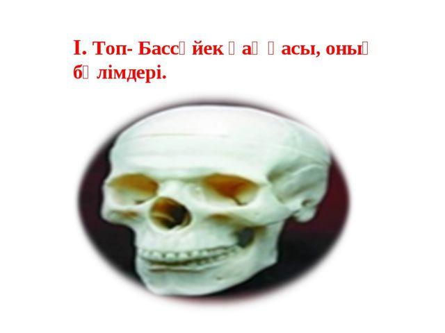 І. Топ- Бассүйек қаңқасы, оның бөлімдері.
