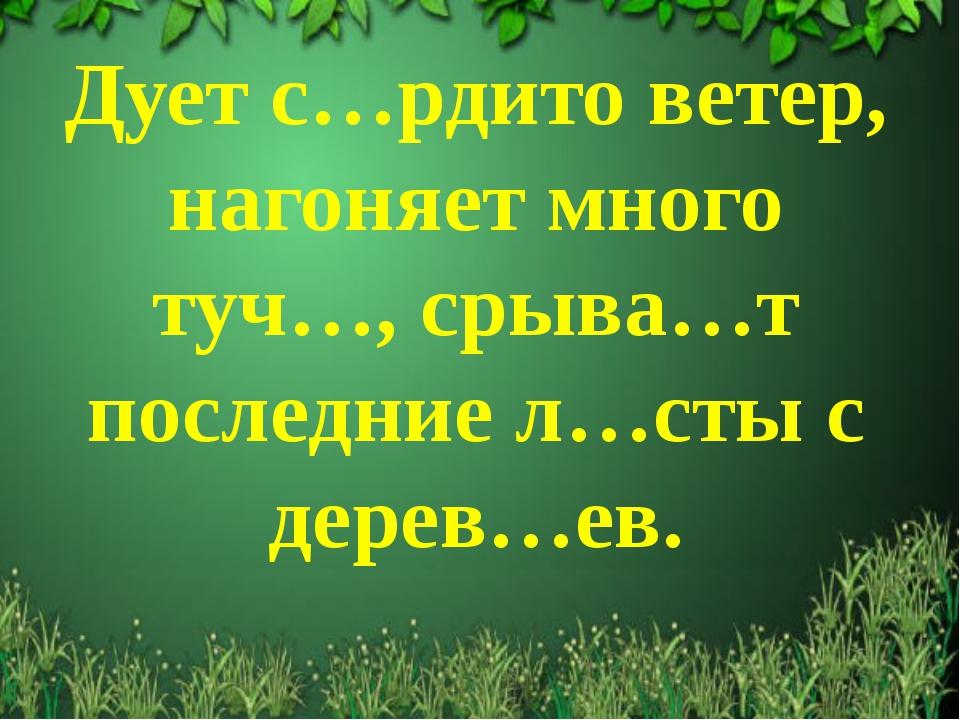 Дует с…рдито ветер, нагоняет много туч…, срыва…т последние л…сты с дерев…ев.