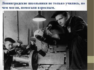 Ленинградские школьники не только учились, но чем могли, помогали взрослым.