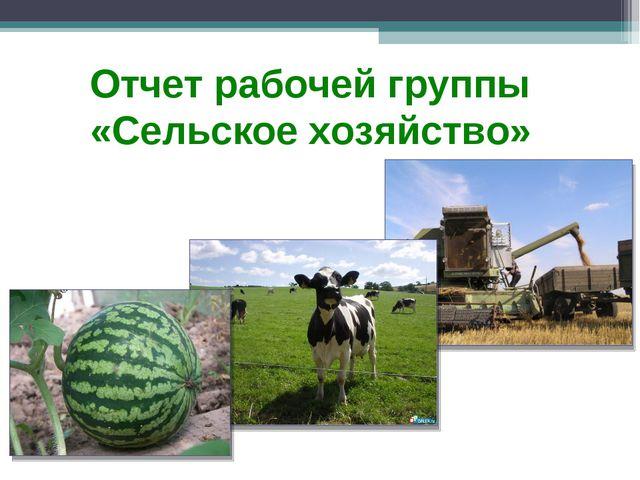 Отчет рабочей группы «Сельское хозяйство»