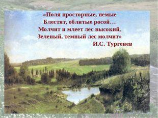 «Поля просторные, немые Блестят, облитые росой… Молчит и млеет лес высокий, З