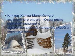 Климат Ханты-Мансийского автономного округа - Югры резко континентальный с п