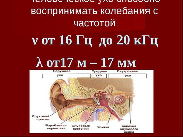 Человеческое ухо способно воспринимать колебания с частотой ν от 16 Гц до 20...