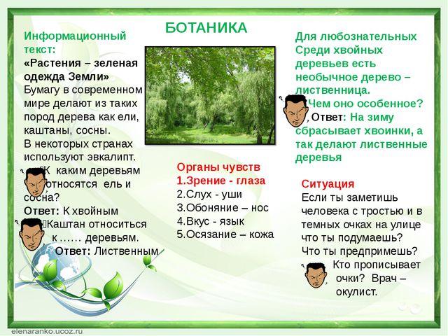 БОТАНИКА Информационный текст: «Растения – зеленая одежда Земли» Бумагу в сов...
