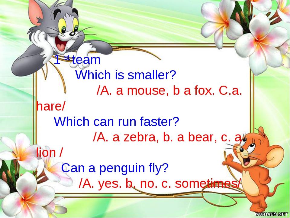 1 st team Which is smaller? /A. a mouse, b a fox. C.a. hare/ Which can run fa...