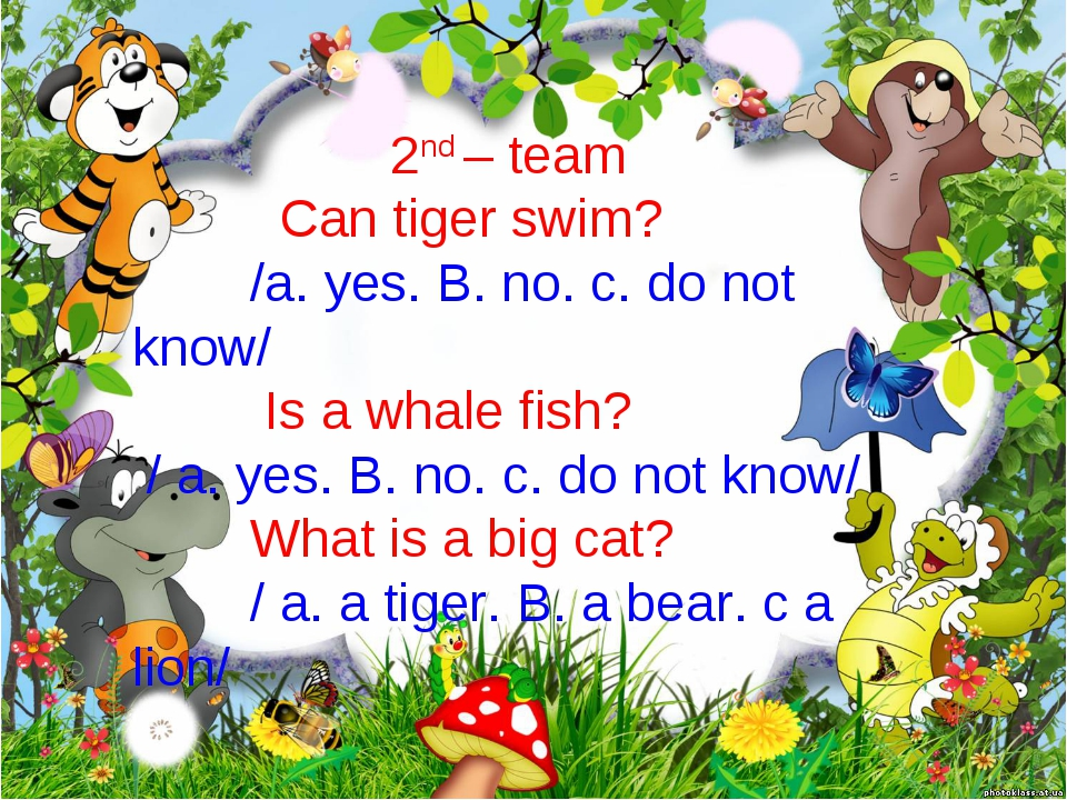 2nd – team Can tiger swim? /a. yes. B. no. c. do not know/ Is a whale fish? /...