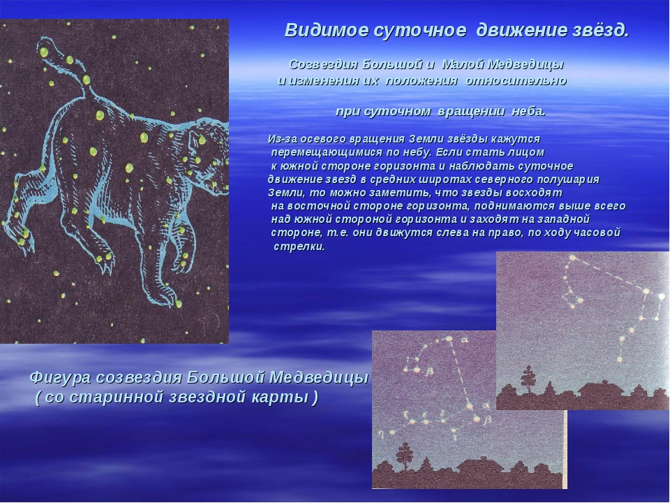 Видимое суточное движение звёзд. Созвездия Большой и Малой Медведицы и измен...