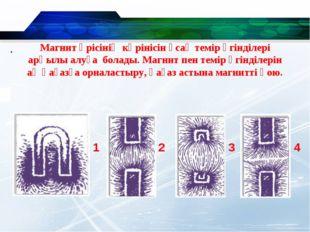 . 1 2 3 4 Магнит өрісінің көрінісін ұсақ темір үгінділері арқылы алуға болады