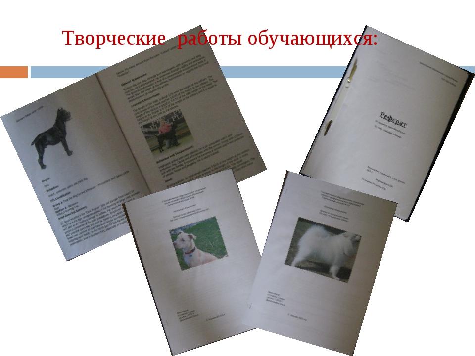 Творческие работы обучающихся: