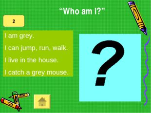 I am grey. I can jump, run, walk. I live in the house. I catch a grey mouse.