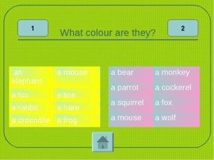 What colour are they? 1 2 an elephanta frog a foxa hare a rabbita lion a c
