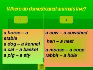 a horse – a kennel a dog – a sty a cat – a stable a pig – a basket a cow – a