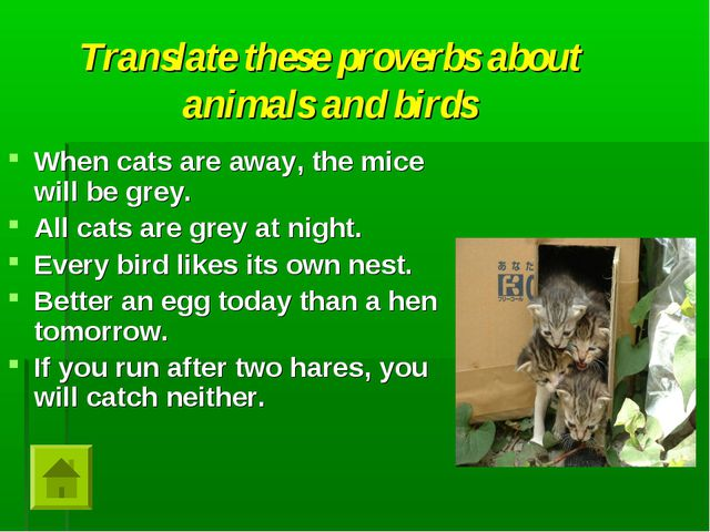 Translate these proverbs about animals and birds When cats are away, the mice...