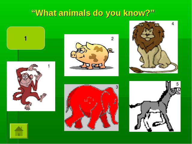 """""""What animals do you know?"""" 1 1 2 3 4 5"""