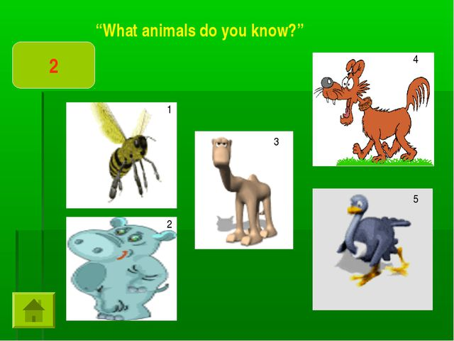 """""""What animals do you know?"""" 2 1 2 3 4 5"""