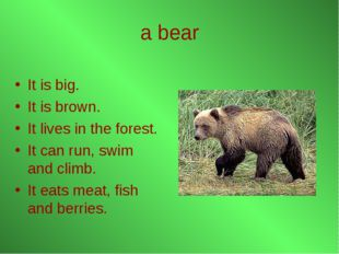 a bear It is big. It is brown. It lives in the forest. It can run, swim and c