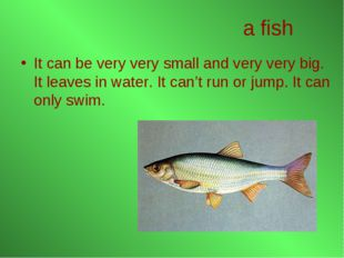 a fish It can be very very small and very very big. It leaves in water. It ca
