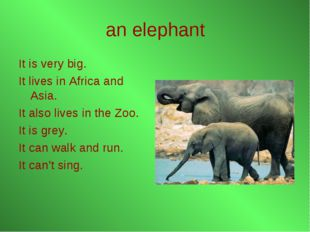 an elephant It is very big. It lives in Africa and Asia. It also lives in the