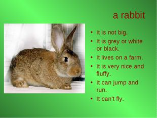 a rabbit It is not big. It is grey or white or black. It lives on a farm. It