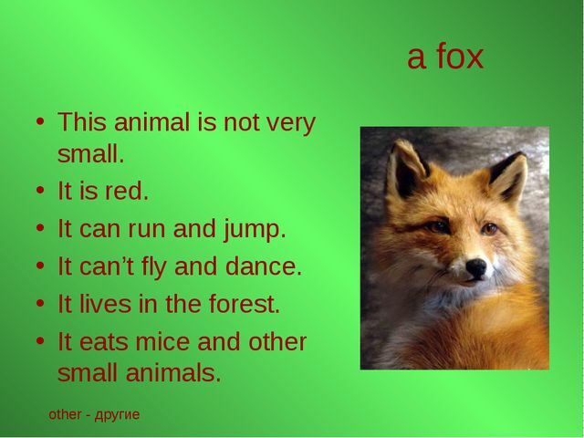 a fox This animal is not very small. It is red. It can run and jump. It can't...