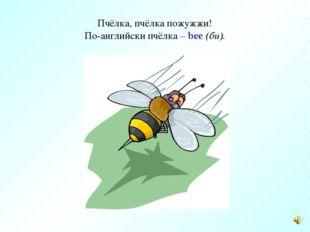 Пчёлка, пчёлка пожужжи! По-английски пчёлка – bee (би).