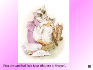 First she scrubbed their faces (this one is Moppet).