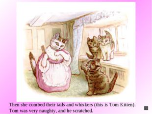 Then she combed their tails and whiskers (this is Tom Kitten). Tom was very n
