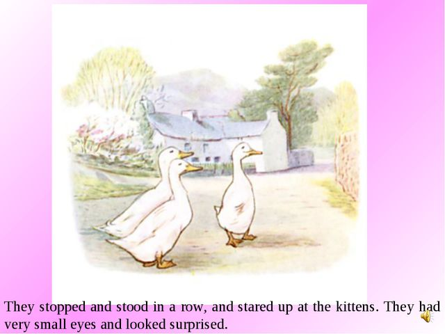 They stopped and stood in a row, and stared up at the kittens. They had very...