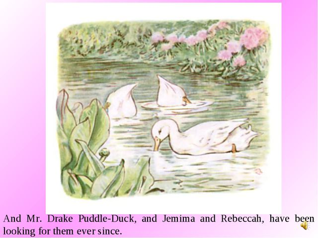 And Mr. Drake Puddle-Duck, and Jemima and Rebeccah, have been looking for the...