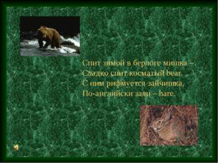 Спит зимой в берлоге мишка – Сладко спит косматый bear. С ним рифмуется зайчи