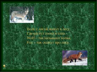 Волк с лисой живут в лесу, Где растут сосна и елка. Wolf – так называют волка