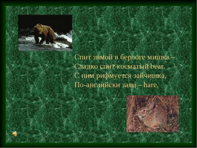 Спит зимой в берлоге мишка – Сладко спит косматый bear. С ним рифмуется зайчи...