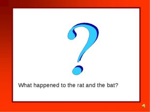 What happened to the rat and the bat?
