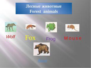 Лесные животные Forest animals Fox Frog Mouse Bear Wolf