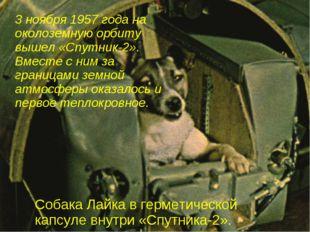 3 ноября 1957 года на околоземную орбиту вышел «Спутник-2». Вместе с ним за г