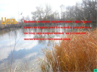 Выявить влияние антропогенного фактора на качество воды в реке Большой и раз