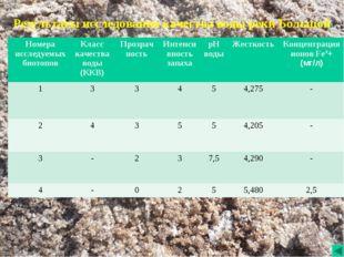 Результаты исследования качества воды реки Большой.