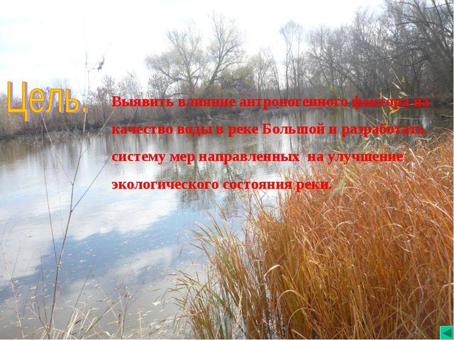 Выявить влияние антропогенного фактора на качество воды в реке Большой и раз...