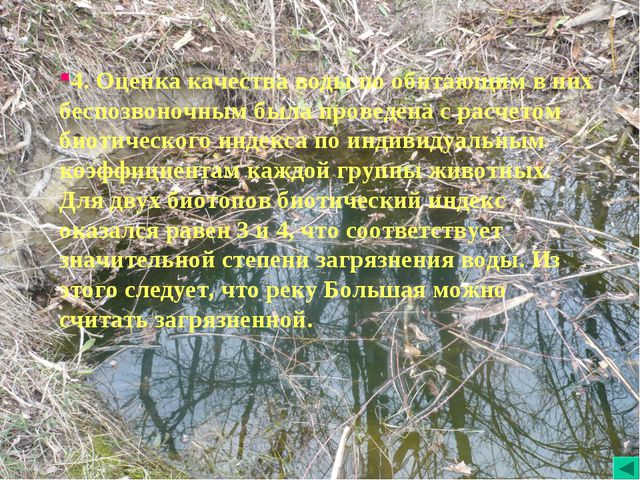 4. Оценка качества воды по обитающим в них беспозвоночным была проведена с ра...