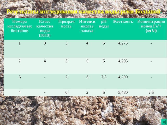 Результаты исследования качества воды реки Большой....