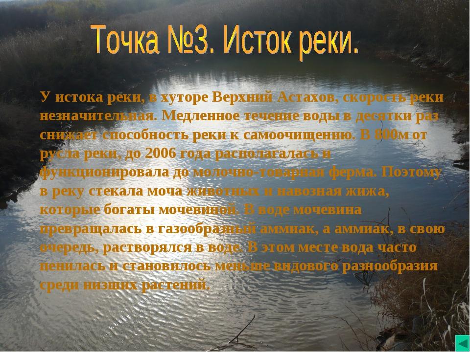 У истока реки, в хуторе Верхний Астахов, скорость реки незначительная. Медлен...